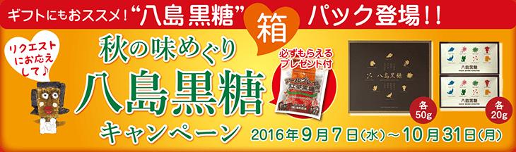 八島黒糖Aセット【アールグレイな紅茶黒糖プレゼント付き】